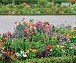 11 krokov ku kvitnúcemu záhonu