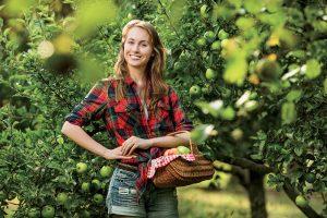 Odolné odrody jabloní