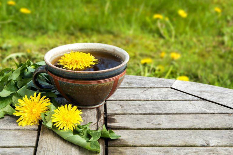 Kalendár záhradkára: Apríl v záhrade