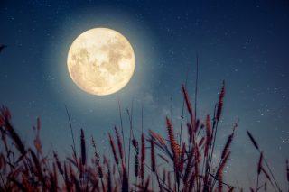 Lunárny kalendár pre záhradu a domácnosť - september 2017