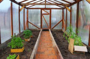 Kompletný návod: Vybudujme si záhradný fóliovník svojpomocne