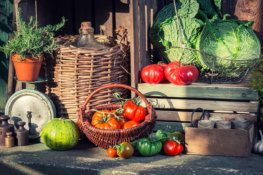 Ako vydrží uskladnená zelenina dlhšie