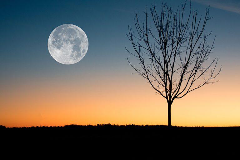 Lunárny kalendár pre záhradu a domácnosť - marec 2018