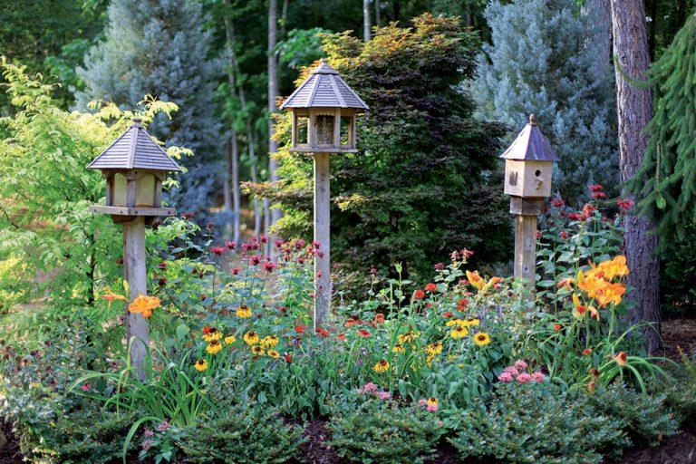 Užitočné vtáky v našej záhrade