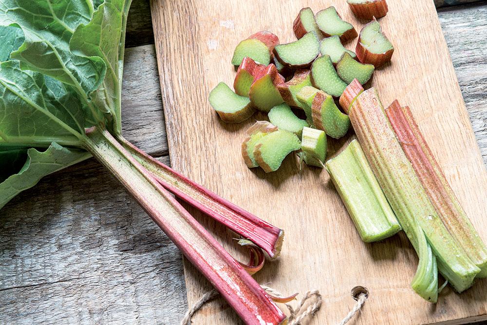 Zo záhrady do kuchyne: Nenáročná rebarbora