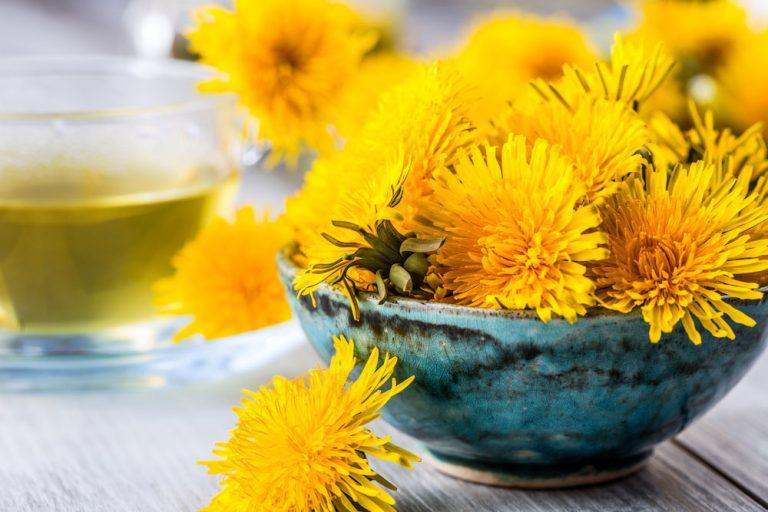 5 jarných liečiviek, ktoré občas nazývame burinou