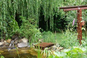 Ekozáhrada, ktorá lieči: Darujte si zdravie z vlastnej záhrady