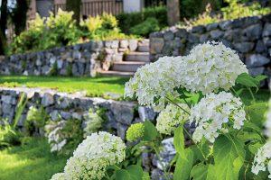 Na návšteve: Premena starej mestskej záhrady