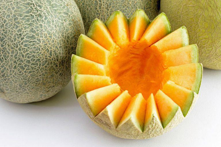 Toto potrebujú melóny, aby vám krásne zarodili