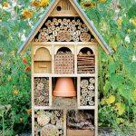 Prečo do záhrady umiestniť domček pre hmyz