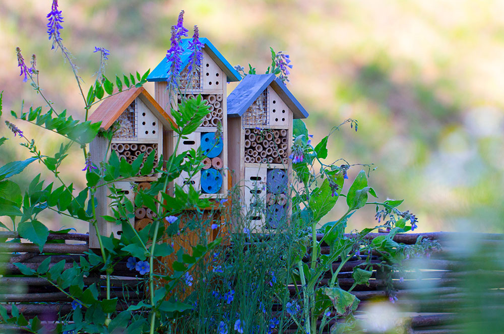 Ako si vyrobiť domček pre hmyz