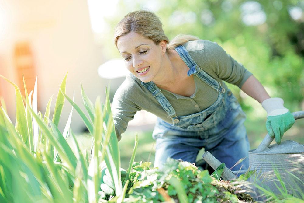 Týchto pár dôležitých krokov vám pomôže udržať letničky a trvalky kvitnúce až do jesene
