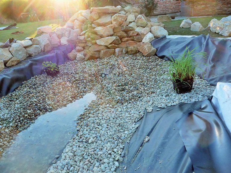Výsadba vodných rastlín