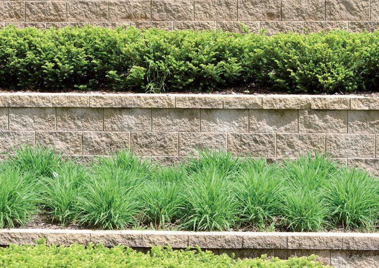 Svahovitý terén v záhrade