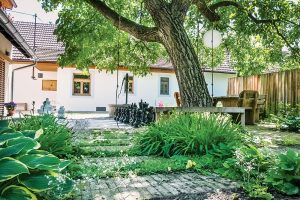 Na návšteve: Odvážna premena vidieckeho dvora