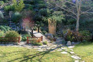 Neurobte pri upratovaní záhrady chybu. Prečítajte si, ako zrezať hortenzie a zazimovať ostatné rastliny.
