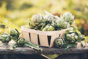 Artičoka, zdravá zelenina so vzhľadom bodliaka