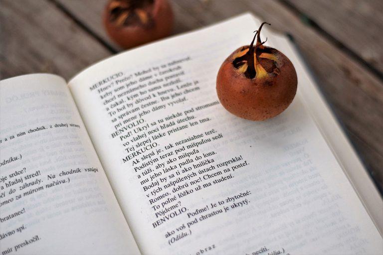 Mišpuľa: Básnil o nej aj Shakespeare. Neuveríte, čo mu pripomínala