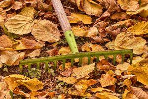 8 najdôležitejších krokov pri zazimovaní okrasnej záhrady