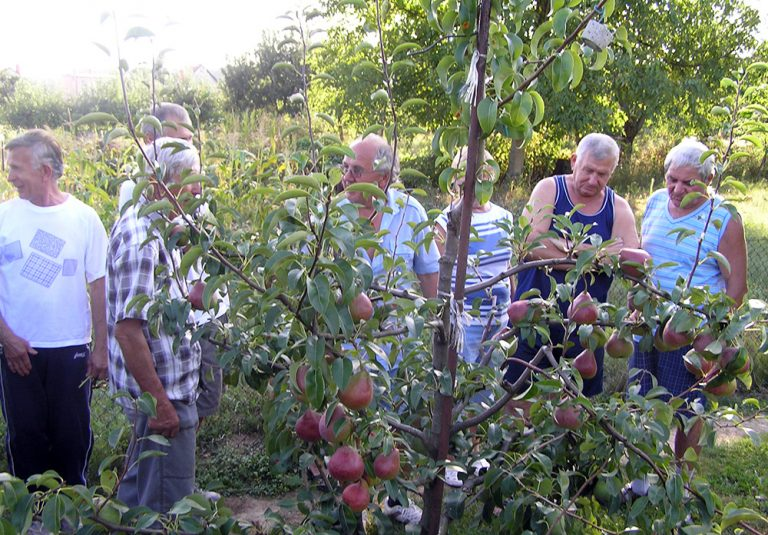 Záhradkári z Opatoviec nad Nitrou