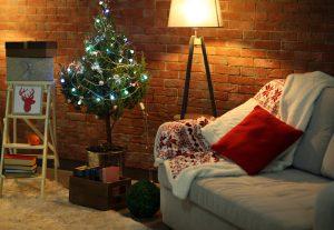Ako sa postarať o vianočný stromček v črepníku