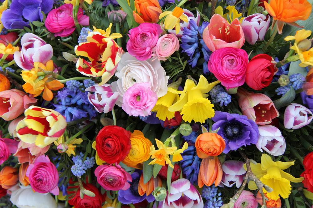 7 jarných kvetov v netypickom štýle