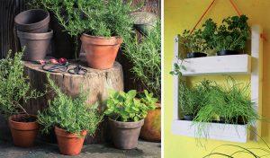 Záhrada na balkóne: Vyrobte si závesnú policu na bylinky