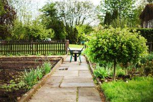 Ako dostať záhradu po zimnom spánku opäť do formy
