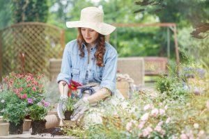 Aby záhrada krásne kvitla: Pripravujeme kvetinové priesady