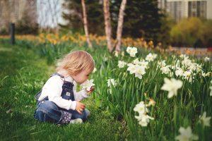 Záhrada sa opäť stáva ich ihriskom, miestom, kde sa cítia voľné a slobodné. Uvažovali ste nad nástrahami, ktoré na ne na záhrade číhajú? Viete ako zabezpečiť, aby záhrada bola bezpečná pre detské hry?