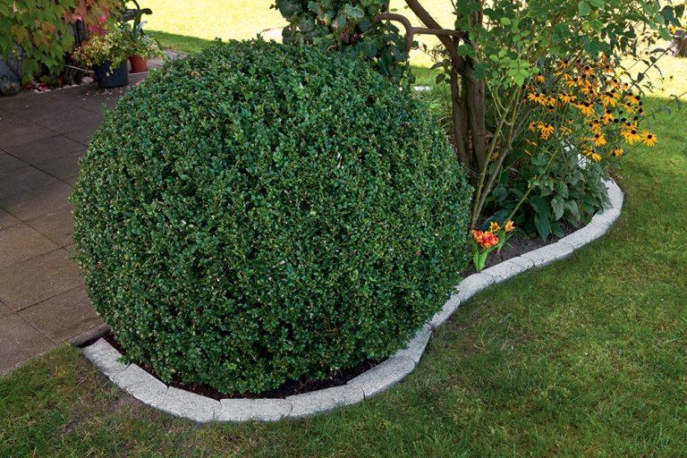 7 tipov na ohraničenie záhona alebo trávnika