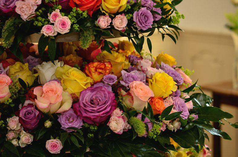 Výstava ruží