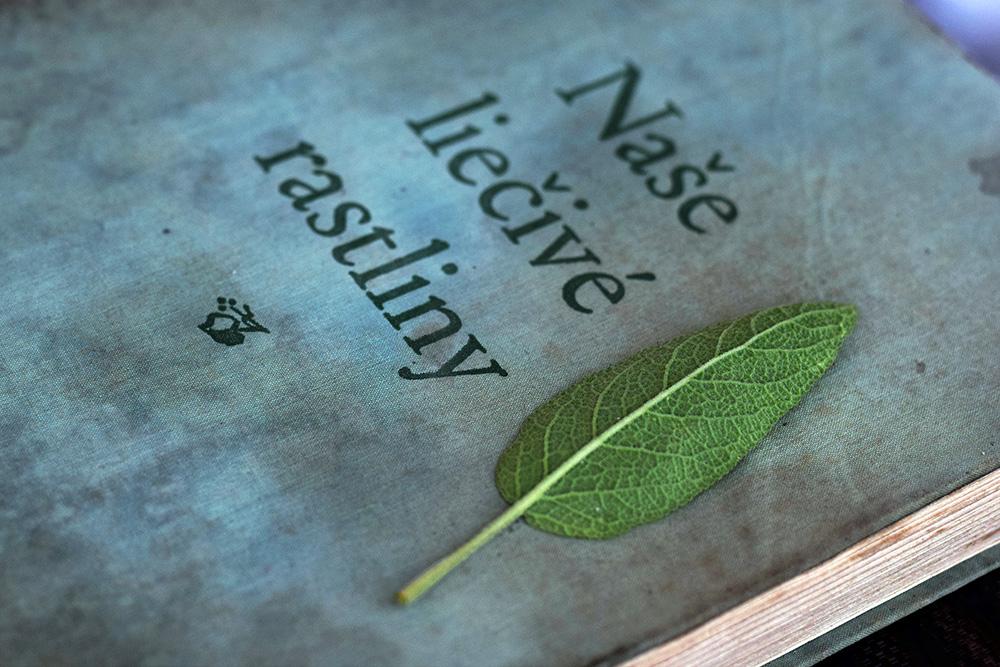 Lístok šalvie na knihe o bylinkách