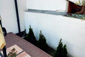 Tuje zasadené vedľa terasy a plota