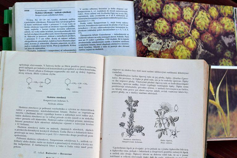 Knihy s informáciami o skalných ružiach
