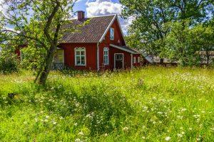 Vidiecky dom a kvetinová lúka pred domom