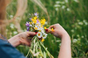 Kytička z lúčnych kvetov