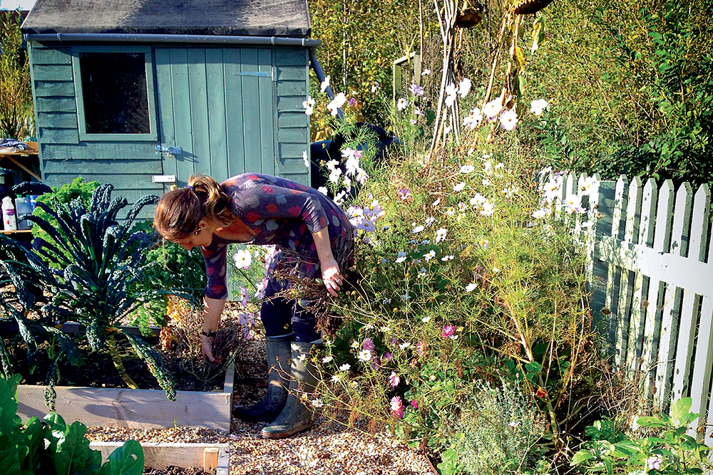 Žena v záhrade, vyvýšené záhony