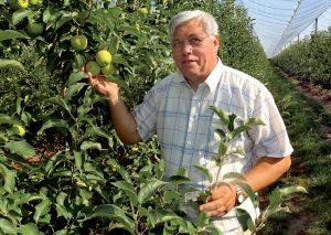 Starší pán v ovocnom sade