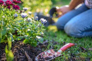 Sadenie kvetov v záhrade, lopatka na zemi
