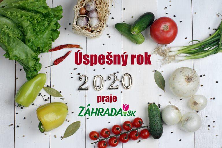 Nový rok 2020