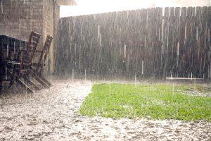 Búrka v záhrade