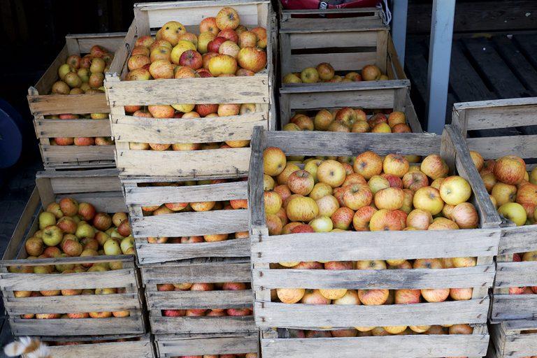 Jablká v bedničkách