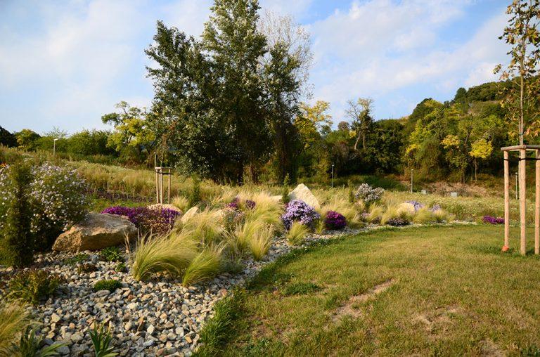 Upravená záhrada, záhon s kvetmi