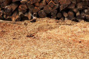 Drevené piliny a poukladané drevo
