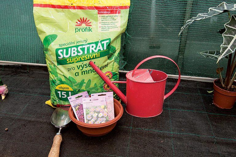 Substrát, krhla, nádoba a semienka