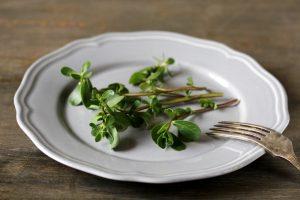 Portulaka na tanieri
