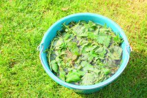Domáce hnojivo