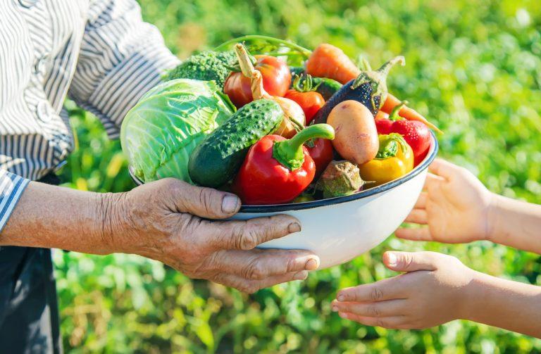 Úroda plodovej zeleniny