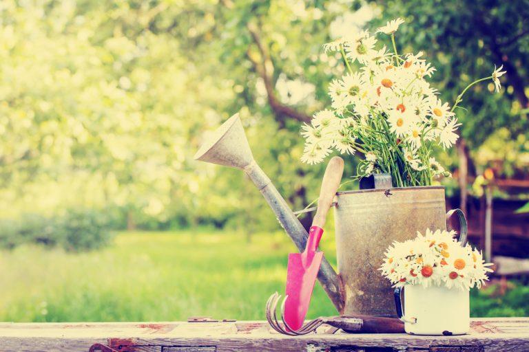 Lunárny kalendár pre záhradkárov - máj